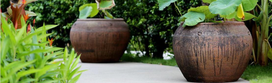 Cache-pot : Embellissez vos plantes et extérieurs