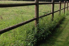 clôture en bois avec rondins