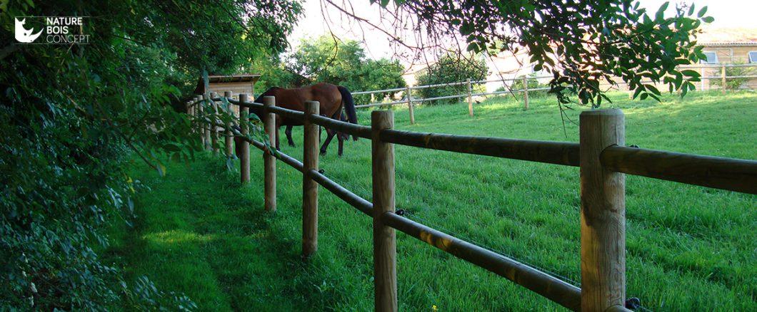 clôture de bois en rondins pâturage et chevaux
