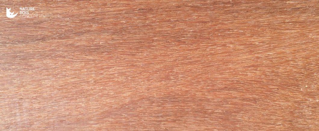 essence cumaru bois exotique Amérique du sud