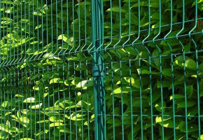 clôture rigide verte NBC