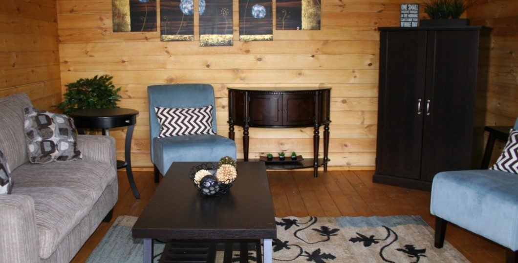 Aménagement salon abri de jardin bois