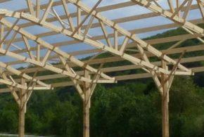 Bois de structure et charpente